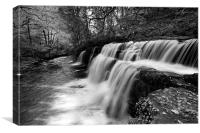 Brecon Waterfall, Canvas Print
