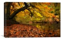 Nidd Gorge in Autumn, Canvas Print