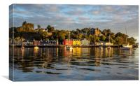 Tobermory Bay, Canvas Print