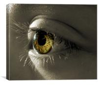 the eye of a child (hazel and green), Canvas Print