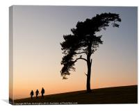 Lone tree on Raddon Top, Canvas Print