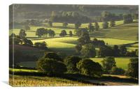 Morning light on fields, Canvas Print