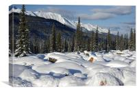 Rockies in Alberta, Canvas Print