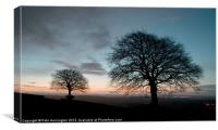 New Years Dawn on Yarde Downs, Canvas Print