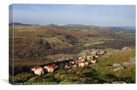 Sheep on the Moor, Canvas Print