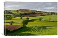 Devon Rural scene, Canvas Print