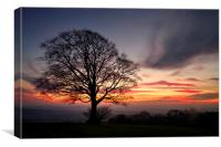 Hill Top Tree and Sunset, Canvas Print