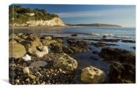 Low tide at Beer, Canvas Print