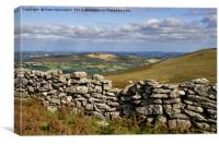 Dartmoor from the Two Moors Way, Canvas Print