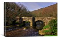 Fingle bridge - Dartmoor, Canvas Print