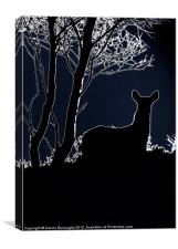 Caught In The Moonlight, Canvas Print