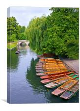 Punting On The River Cam At Cambridge, Canvas Print