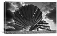 Aldeburgh Scallop, Canvas Print