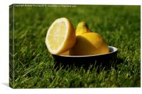 Refreshing Sliced Lemon Outdoors on Grass, Canvas Print