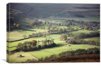 That Littondale Luster, Canvas Print