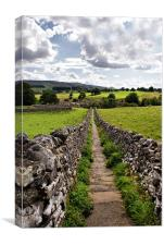 Path To God's Own County, Canvas Print