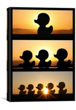Duck Fun In The Sun! - Triptych, Canvas Print