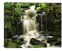Steeton Falls, Canvas Print