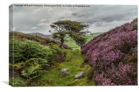 The Gnarly Tree & Heather Of Grinton Moor, Canvas Print