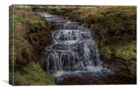 Jenny Whalley Force II, Canvas Print