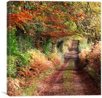 Autumn Track, Canvas Print