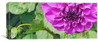 Bud and Bloom, Canvas Print