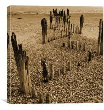 Beach Timbers, Canvas Print