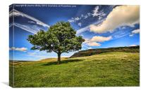 The Lonley Tree at Dovestones, Canvas Print