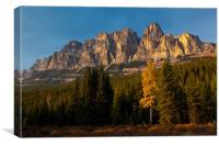 Bow Valley Parkway, Canvas Print