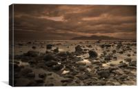 Ruggedness at Rossglass, Canvas Print