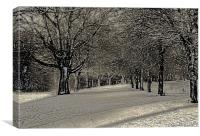 Winter in the Park (artistic), Canvas Print