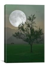 MOONLIGHT ON THE PLAINS, Canvas Print