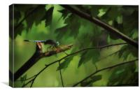 DRAGONFLY IN THE TREES, Canvas Print