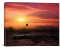 A New Sunset, Canvas Print