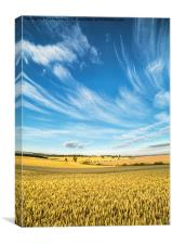 Northumberland Meets the Sky, Canvas Print