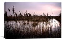 Fenland waterways near Ely. Now a nature reserve, Canvas Print