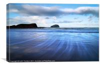 Bass Rock Streaky, Canvas Print
