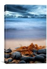 Beach and Stones, Canvas Print