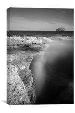 Bass Rock exposure, Canvas Print