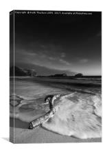 Seacliff Beach, Canvas Print