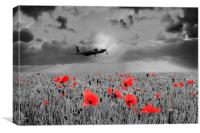 Mosquito Tribute , Canvas Print