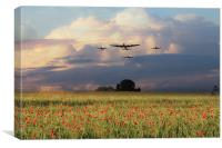 Remembrance Day , Canvas Print