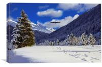 Flying The Fjords , Canvas Print