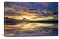 Royal Air Force Tribute , Canvas Print