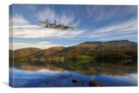Mosquito Skimming The Water, Canvas Print
