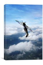 Spitfire Victory , Canvas Print