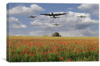 Over The Poppy Fields , Canvas Print