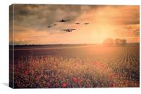 Warbird Fly Past, Canvas Print