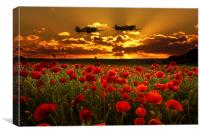 Sunset Poppies Fighter Command, Canvas Print