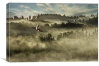 Tiffy In The Mist, Canvas Print
